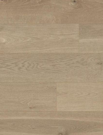 Oak Ancona s305