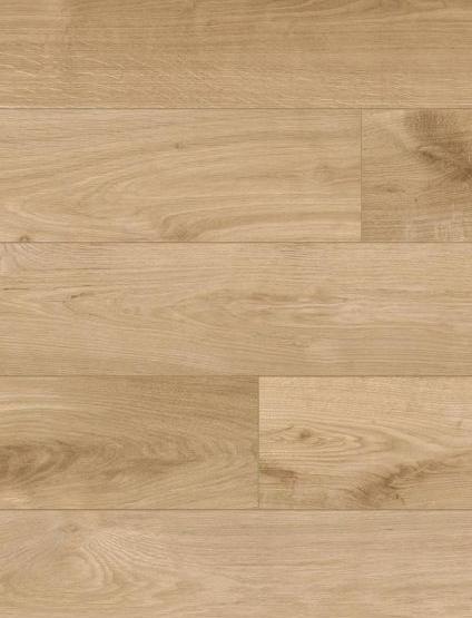 Oak Lucca s304